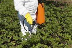 Patentino fitosanitari: Obbligo per tutti